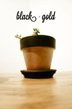DIY Black + Gold Succulent Pots