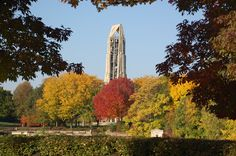 Carillon Fall Foliage
