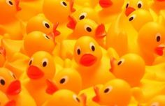 Remember these 28,000 rubber duck bath toys lost at sea in the 90ies, roaming the globe since? They triggered the idea of a fun meets culture evening this Saturday - Rubber Duckie, in the Museum of Brands. You will get to...  go on a Time Travel Tunnel Duck Hunt, join a Brazilian 'Silent-Disco-Carnival-Quiz-Night', talk to anthropologists and +  >> https://www.eventbrite.co.uk/e/rubber-duckie-an-evening-of-global-food-drinks-dancing-and-discovery-tickets-19993790967