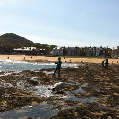 The lovely seaside town of North Berwick