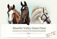 Shumba Valley Farm South African accommodation venue in Eastern Freestate offering horse riding, clay shooting, quad bikes, fishing in the Caledon river and your holiday will be fully catered for. Horse Riding, Good Old, African, Horses, Animals, Animales, Animaux, Animal, Animais