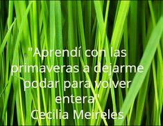 """""""Aprendí con las primaveras a dejarme podar para volver entera"""" Cecilia Meireles #frases #8demarzo"""