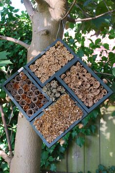 Make your own insect hotels using only recycled materials! Give bees, ladybirds and lacewings a place to hibernate. Great DIY project for kids too