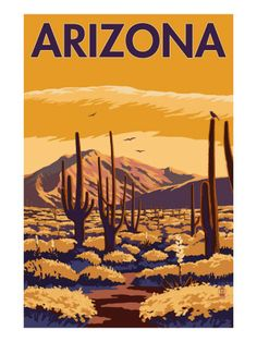 Saguaro National Park, Arizona - Lantern Press ArtworkQuality Poster Prints Printed in the USA on heavy stock paper Crisp vibrant color image that is resistant to fading Standard size print, ready for framing Perfect for your home, office, or a gift Surf Vintage, Photo Vintage, Vintage Art, Poster Retro, Poster S, Print Poster, Poster Wall, National Park Posters, National Parks