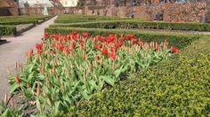 Formal garden at Rosenborg Castle, Copenhagen