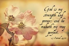 2 Samuel 22:33 ~ God is my strength and power: and he makes my way perfect.