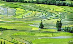 Kashmir packages - Get royal packages for Jammu and Kashmir tour with pre-eminent amenities to make your travel more comfortable at www.kashmir.co .