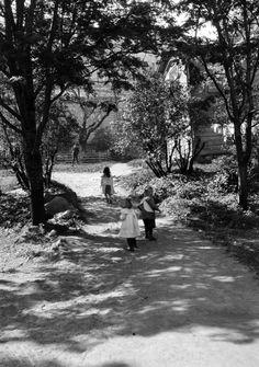 Pohjoisranta 16, piha. Timiriasew Ivan 10.10.1911. Helsingin kaupunginmuseo negatiivi, nitraatti, mv - Finna