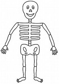 Skeleton Coloring Sheet | Coloring Activities - Science | Pinterest ...