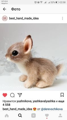 CLICK Visit link above for more options Cute Baby Bunnies, Cute Baby Animals, Bunny, Needle Felted Animals, Felt Animals, Wet Felting, Needle Felting, Doodle Drawing, Creature Picture