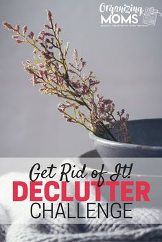 Are you ready to get rid of the clutter in your home? This challenge will help…