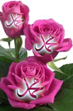 Muhammed Sav, Muhammad, Good Morning Image Quotes, Abandoned Houses, Good Night, Allah, Flowers, Plants, Free