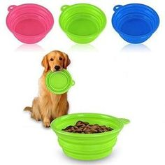 Portable Collapsible (with Hook) Pet Water Bowl (4 Colors)