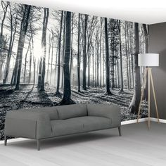 Black and White Forest Trees Mural Wallpaper Black Wallpaper Bedroom, Hallway Wallpaper, Normal Wallpaper, Black And White Wallpaper, Tree Wall Murals, Mural Wall Art, Forest Wallpaper, Tree Wallpaper, Feature Wall Living Room