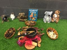 Wombat stew role play corner pre primary Aboriginal Education, Indigenous Education, Aboriginal Culture, Early Childhood Activities, Early Childhood Education, Early Childhood Centre, Early Education, Australia Animals, Australia Day