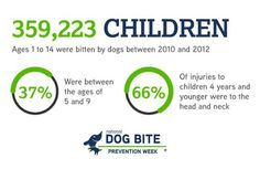 When you're teaching children about dog bite prevention and how to be safe around dogs, keep it simple. Veterinary Medicine, Head And Neck, Animals For Kids, Teaching Kids, Dog Training, Respect, Public, Pets, Children