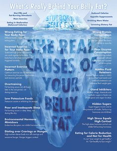 Stubborn_Belly_Fat_Poster