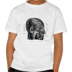Human head-glands, muscles and veins t-shirts T Shirt, Hoodie Sweatshirt