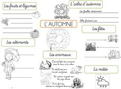 Cartes heuristiques - Les saisons French Teacher, Teaching French, Drawing Conclusions, French Resources, French Immersion, French Lessons, French Class, Practical Gifts, Learn French