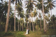 wedding day photography, Bride and groom portraits in coconut grove Koh Samui…