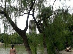 The shot of the Beijing University,the Unnamed Lake(未名湖).