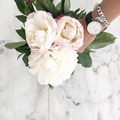My favorites.  And you can still get a 15% discount at @danielwellington with the code 'Isabel_mjj' by isabel_mjj