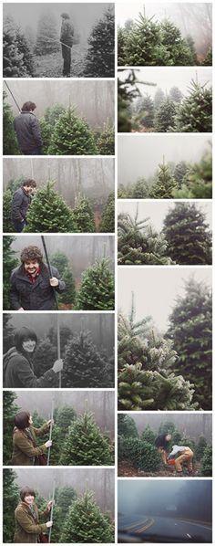 Photos by Jason and Heather Barr of Revival Photography NC Wedding Photographers Christmas Tree Farm in Boone NC Choose and Cut #christmastreefarm #christmastree #boone #appalachianevergreens