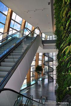 The Gibson Hotel, Dublin, Ireland Dublin Ireland, Switzerland, Stairs, England, Restaurant, Interiors, Interior Design, Modern, Travel
