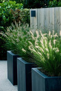 Moderne onderhoudsvrije tuin
