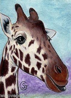 Nfac Giraffe Watercolor Art ACEO Original Tongue Silly Nibblefest Goeben   eBay