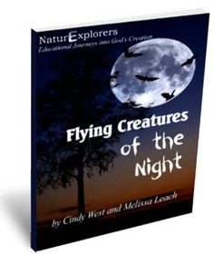 Flying creatures like owls, bats, moths and lightning bugs make evening nature study come alive.