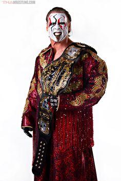 93155fd1009 TNA World Champion