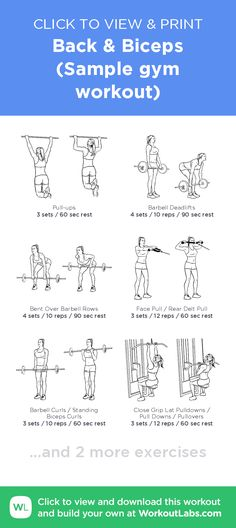 Back & Biceps (Sample gym workout) – click to view and print this illustrated exercise plan created with #WorkoutLabsFit