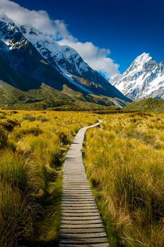 VERIFIED. Aoraki / Mount Cook is the highest mountain in New Zealand. This (Hooker Valley) is one of many hiking/tramping trails in the Mount Cook National Park. Many, relatively easy walks start at Mt Cook Village. ( see: DOC.co.nz ) . . Mt. Cook is the high-point. Until 2014, its height was officially listed as 3,754 metres, but because of a land-slip & rock-fall new measurements have given a revised height of 3,724 metres (12,218 ft).It lies in the Southern Alps, the mountain range which…