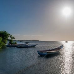 (4) Twitter Margarita, Boat, Twitter, Islands, Venezuela, Dinghy, Boats, Margaritas