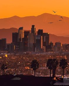 Color by Chosen by Location: Los Angeles, CA 🎨 Ny Skyline, Seattle Skyline, Los Angeles Wallpaper, Los Angeles Skyline, City Of Angels, Dream City, California Dreamin', City Photography, San Francisco Skyline
