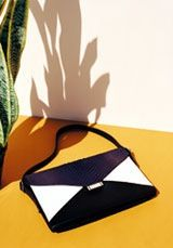 Celine on Pinterest | Luggage Bags, Celine Bag and Fall Bags