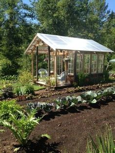 Greenhouse from Reclaimed Timber and Vintage Multipane Wood Windows and Doors Second Use project gallery image. by rhonda