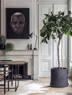 Maison Hand - réalisation appartement Lyon rue Bizollon - photos Felix Forest