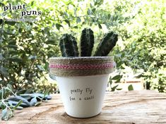 """4"""" Pretty Fly For a Cacti » Plant Indoor and Outdoor Pot or Planter"""