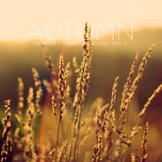 MIX: Autumn (Or What It Feels Like To Fall) Vol. 2