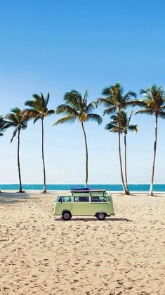 Take your bus to the beach! #palms #vw #bus