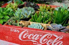 Hometalk :: I found a vintage Coca Cola soda pop crate at a local antiques mall. I…