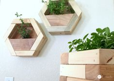 How to make DIY Hexagon Planters, free plans and picture tutorial. Diy Wooden Planters, Diy Wall Planter, Diy Planters Outdoor, Wood Planter Box, Scrap Wood Crafts, Scrap Wood Projects, Woodworking Projects Diy, Diy Furniture Easy, Flower Planters
