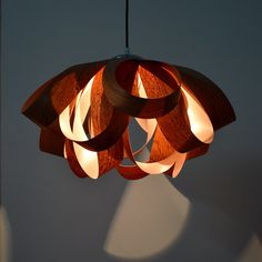 I am a lighting designer in wood veneer lamps.All of my lamps are made by my hand, and made from real wood material, most of them can be made according