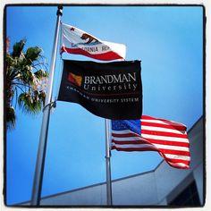 Happy Flag Day from #Brandman University