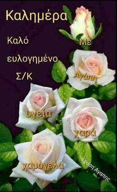 Good Morning, Rose, Flowers, Good Night, Buen Dia, Pink, Bonjour, Roses, Royal Icing Flowers