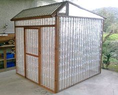 DIY Greenhouse Ideas That Are Gardening Gold