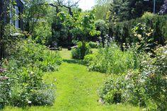 Haven i Bjergene - Signes Vals: Lidt før og efter billeder