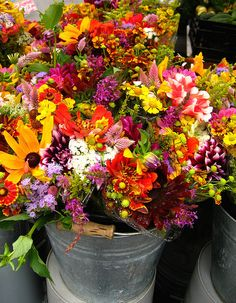 I love these summer/fall mixed bouquets! I would love to have them all over my home all year round!